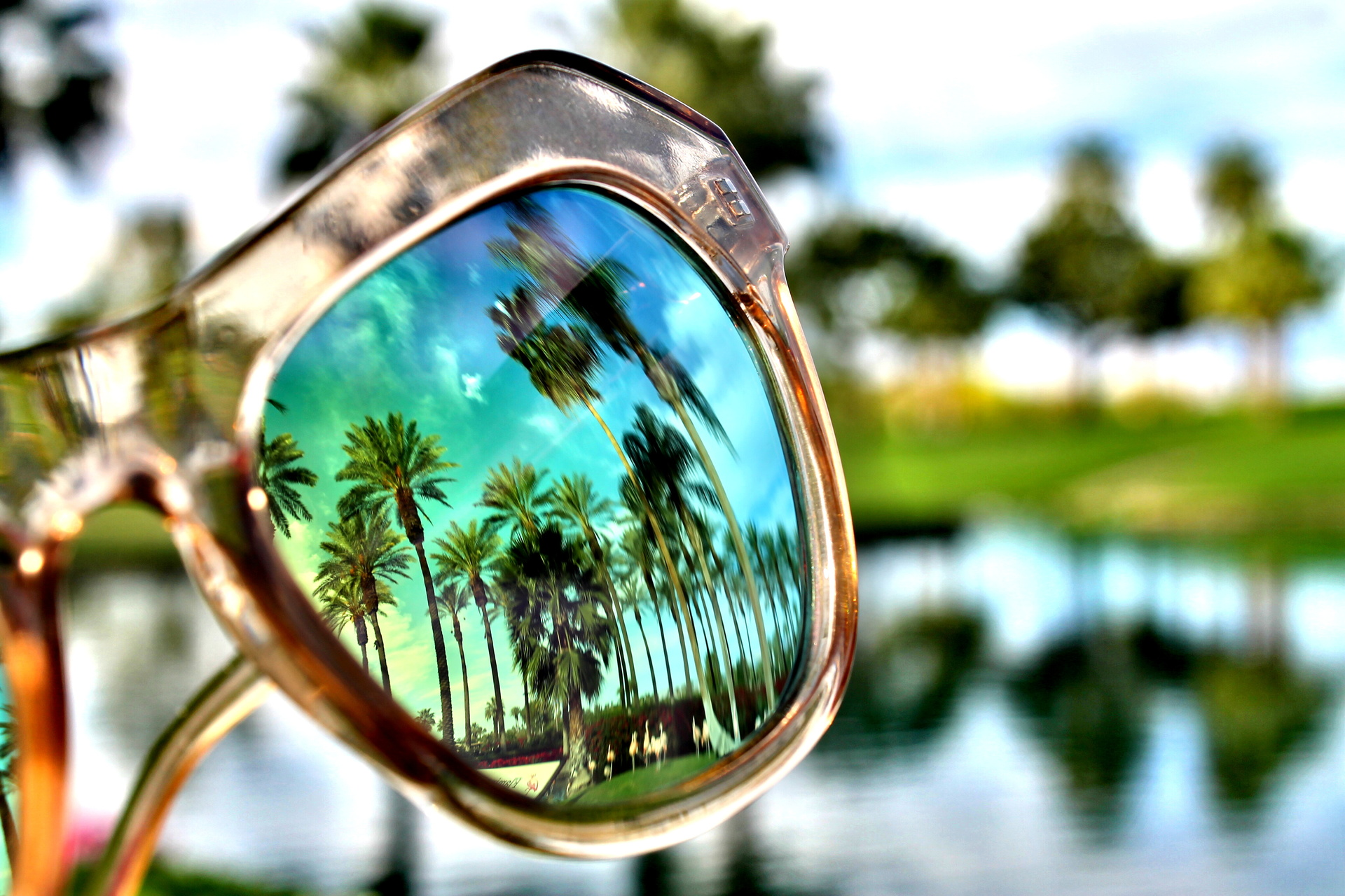 Reflection of palm trees on sunglasses