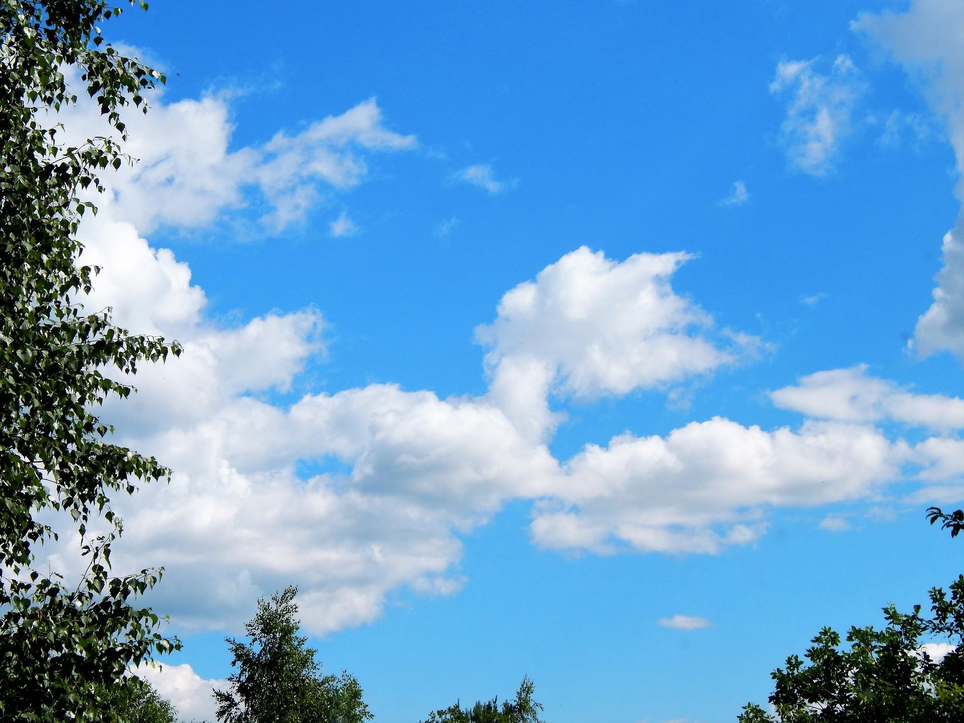 summer clouds | vasili.danilov, tree, sunshine, sun
