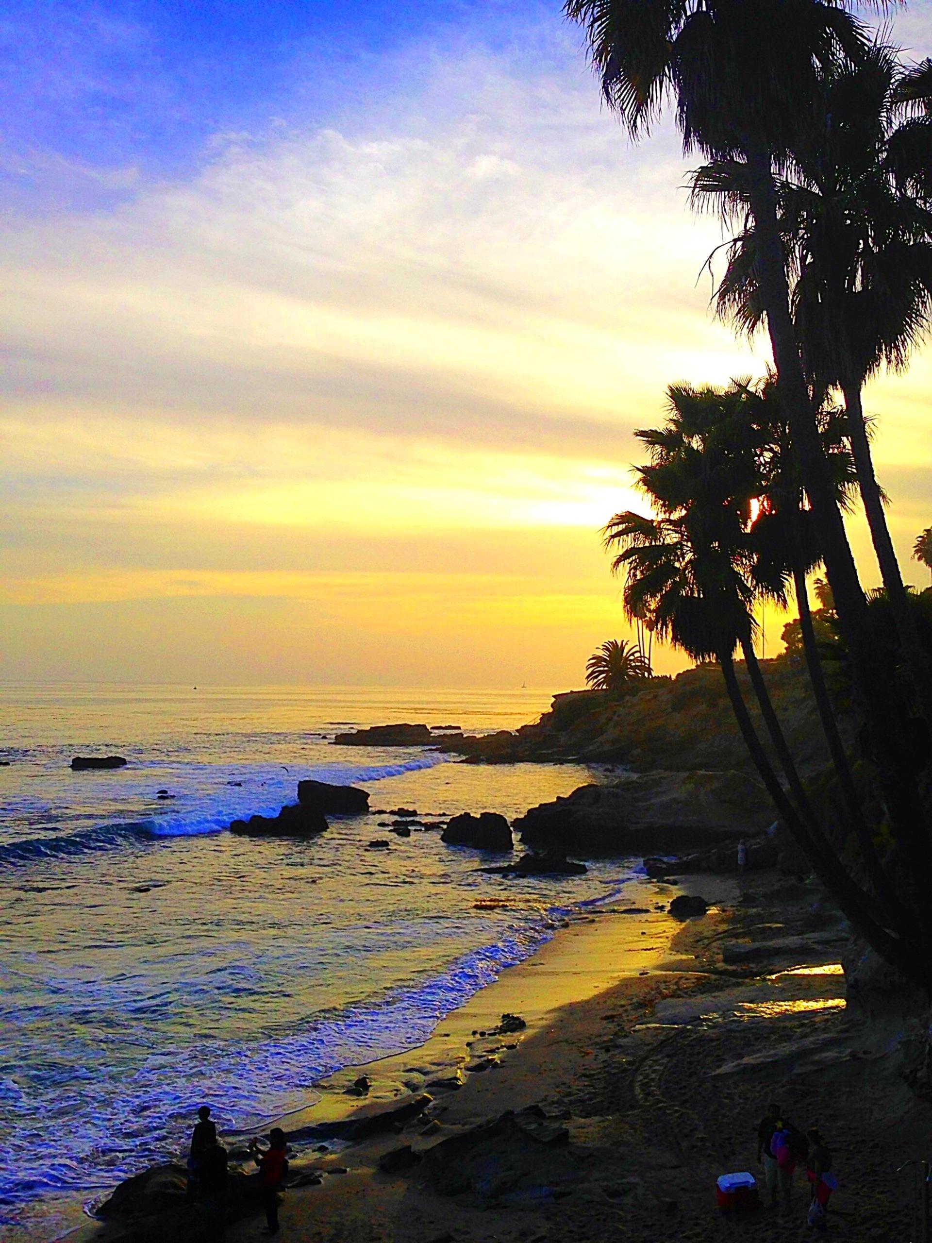 California sunset  | courttney2005, beach, no person, water