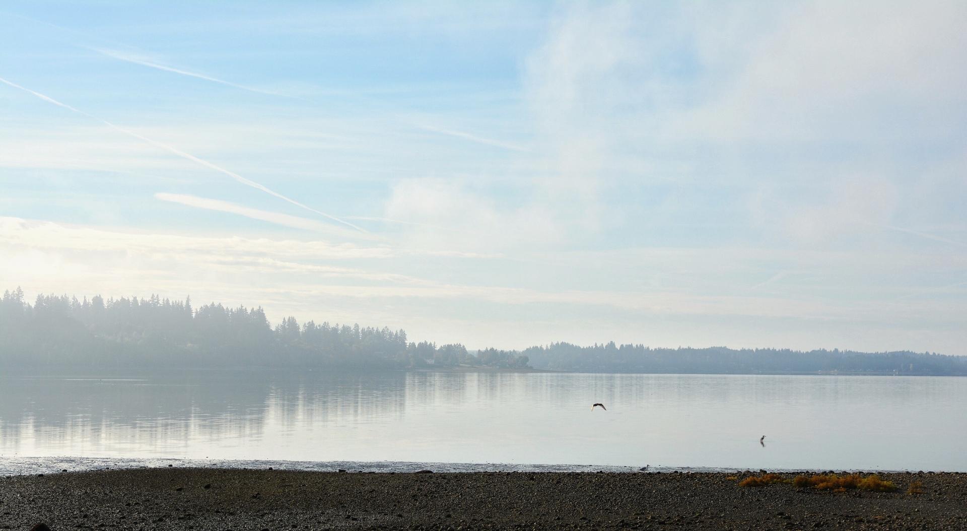 Fog and Reflection | mbocast, beach, fog, lake