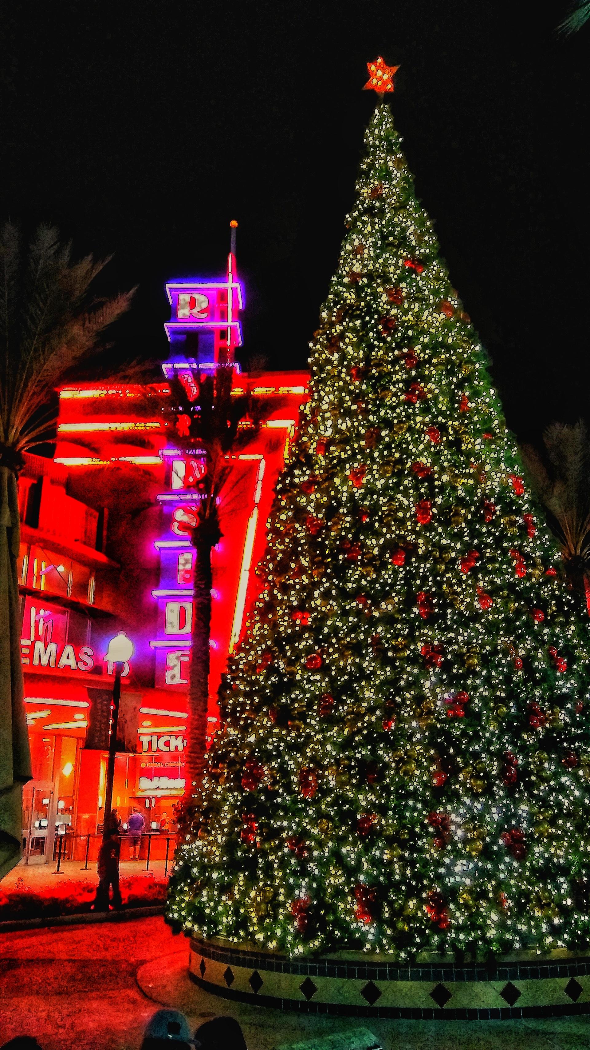 Christmas Riverside | brad_from_riverside, Christmas tree, no person, celebration