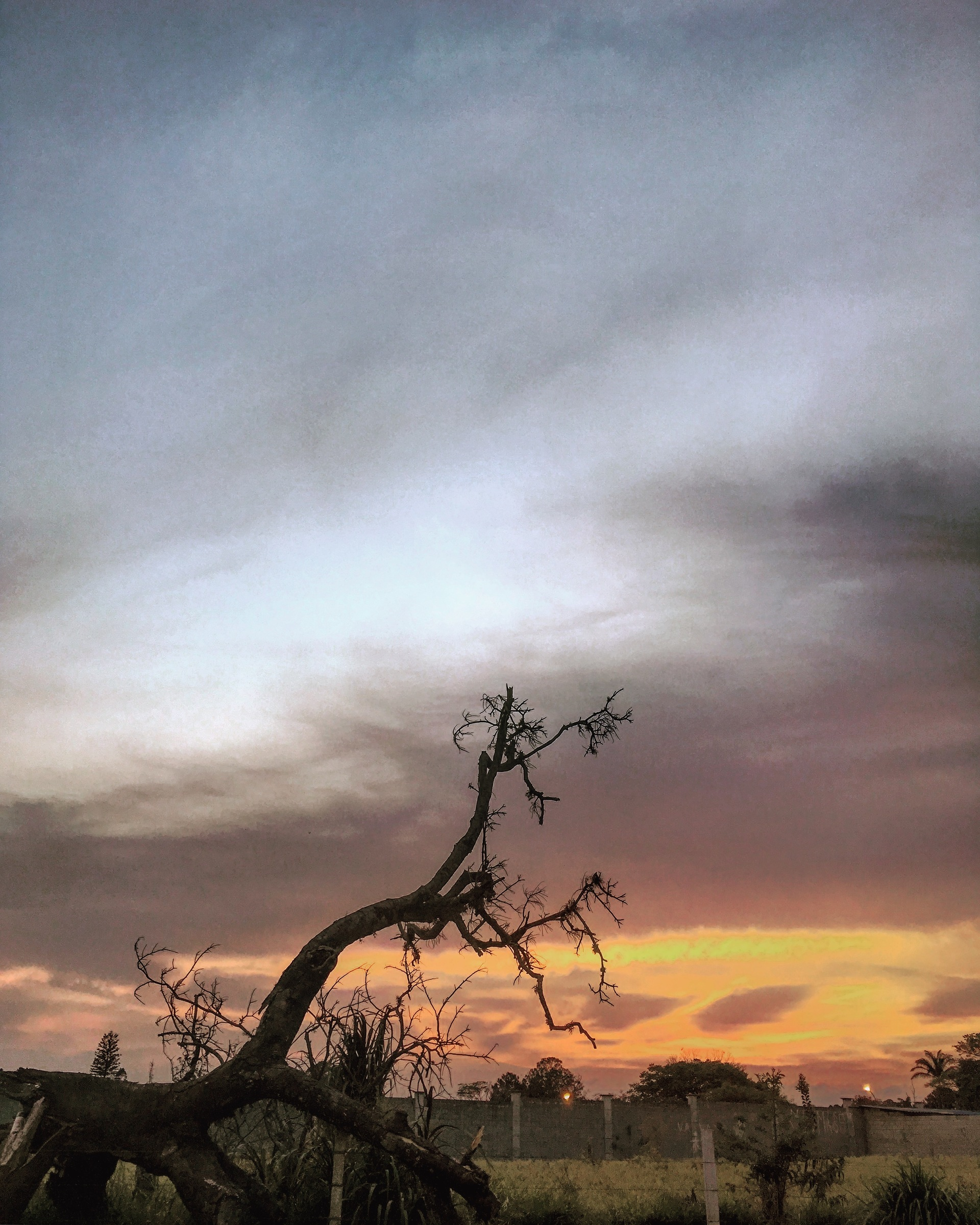 ☀️Eis que o brilho do #sol surgiu, contagiou e animou nosso dia! OPS: cadê ele??? 😬 #natureza #paisagem #fotografia #amanhecer #morning