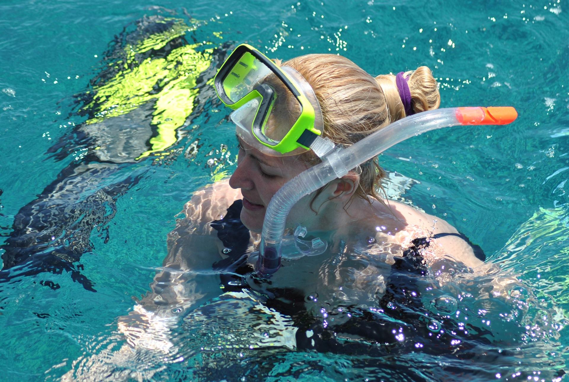water | underwater, swimming, water sports, ocean