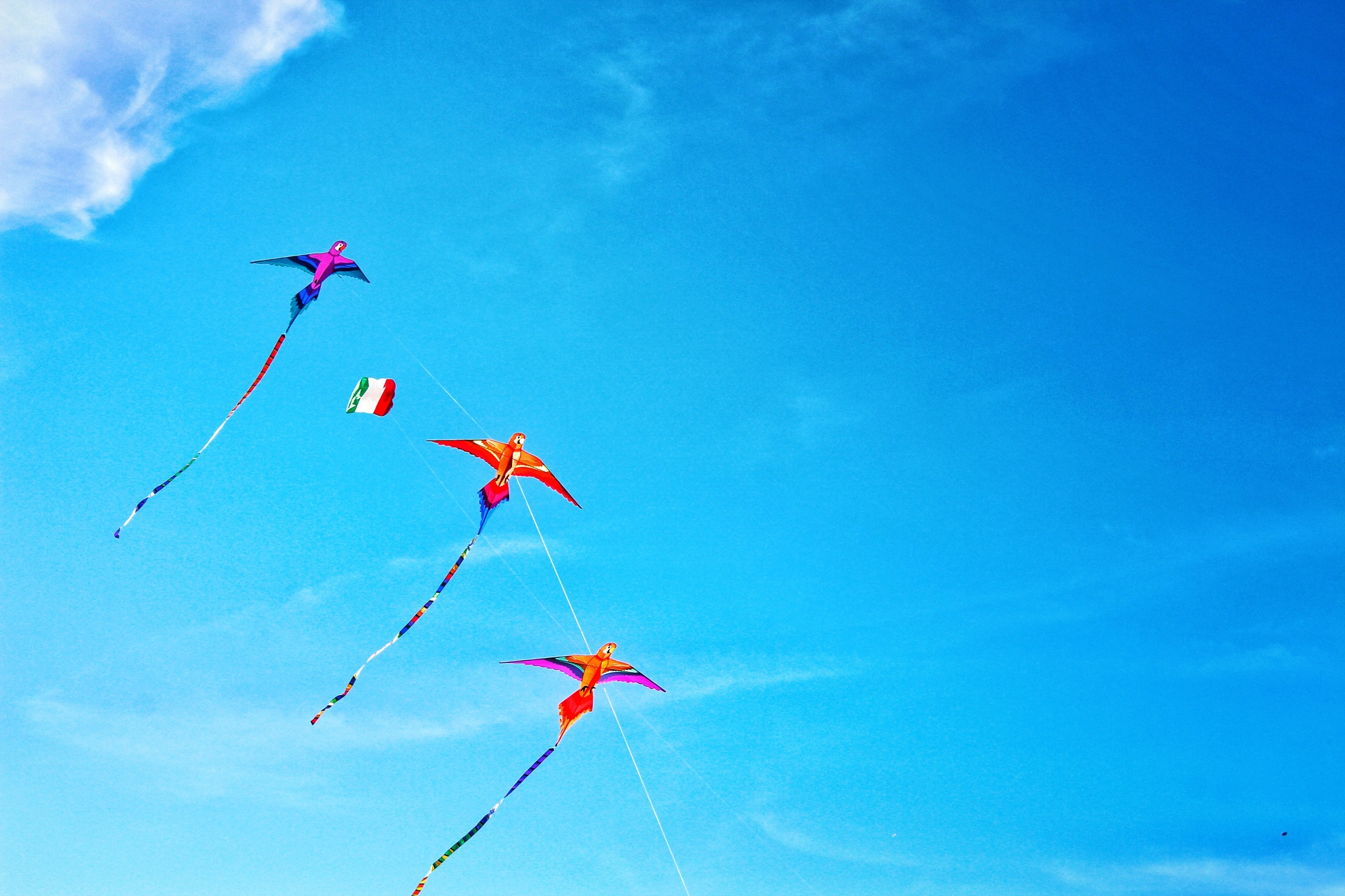 Kites flying in sky | photography, color image, horizontal, outdoors