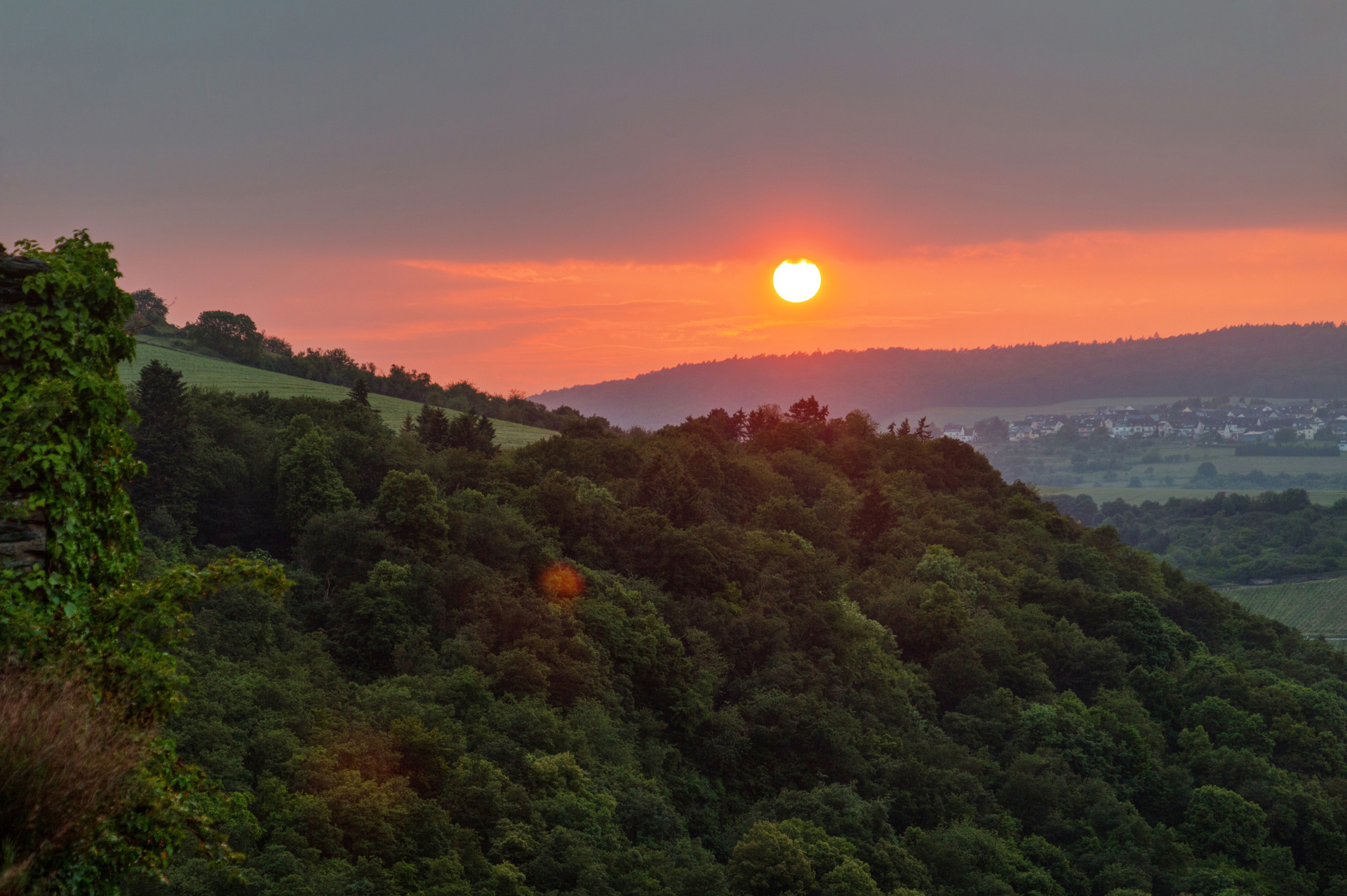Sunset over Oberwesel forest