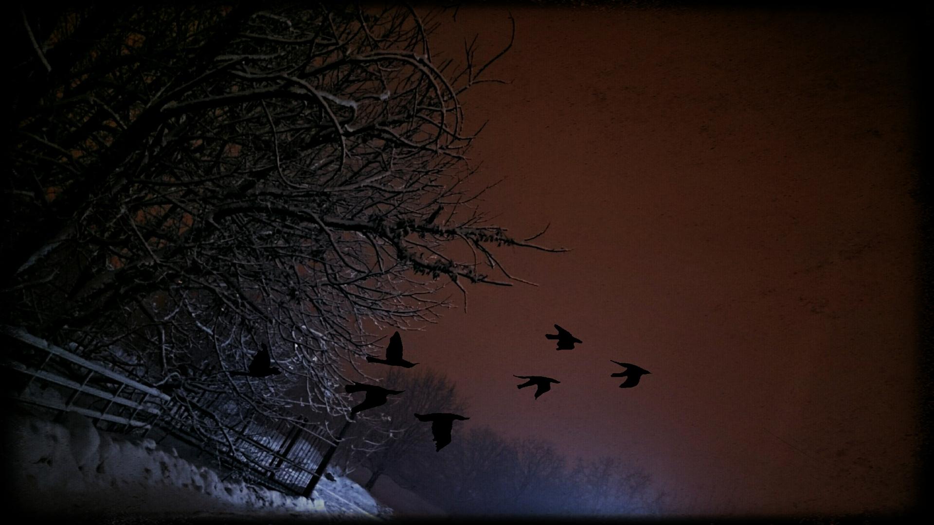 Midnight Views.. | berr, dark, evening, landscape