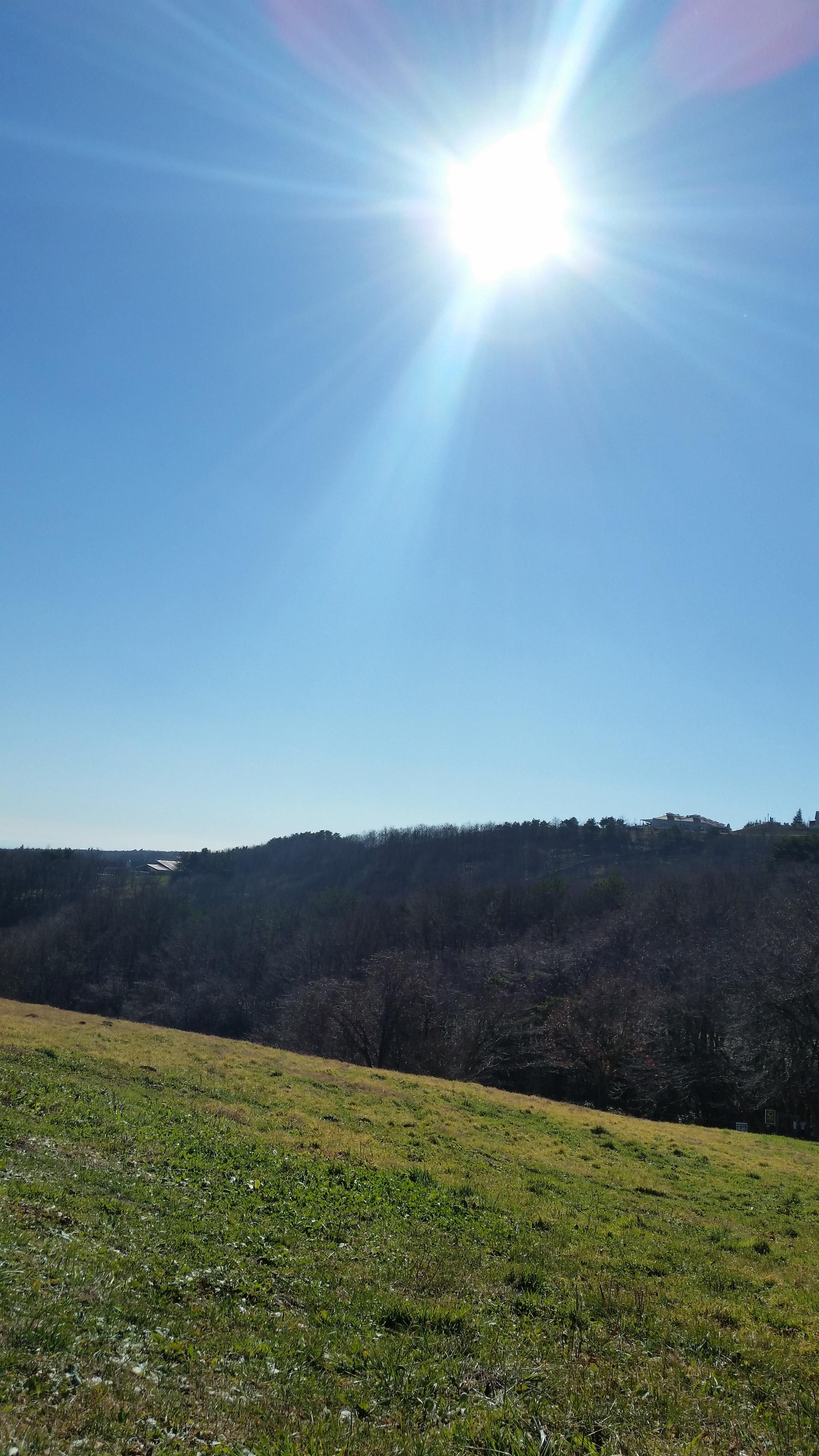 Sunshine | present4_u, grass, hill, landscape