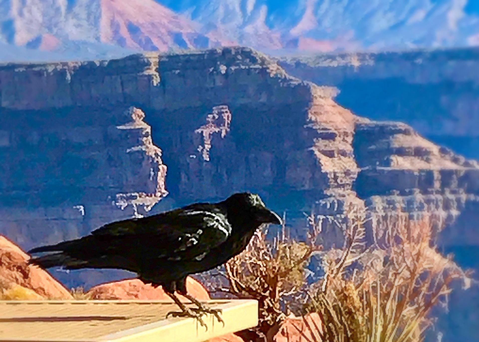 Grand Canyon  | cea1997, adventure, canyon, horizontal