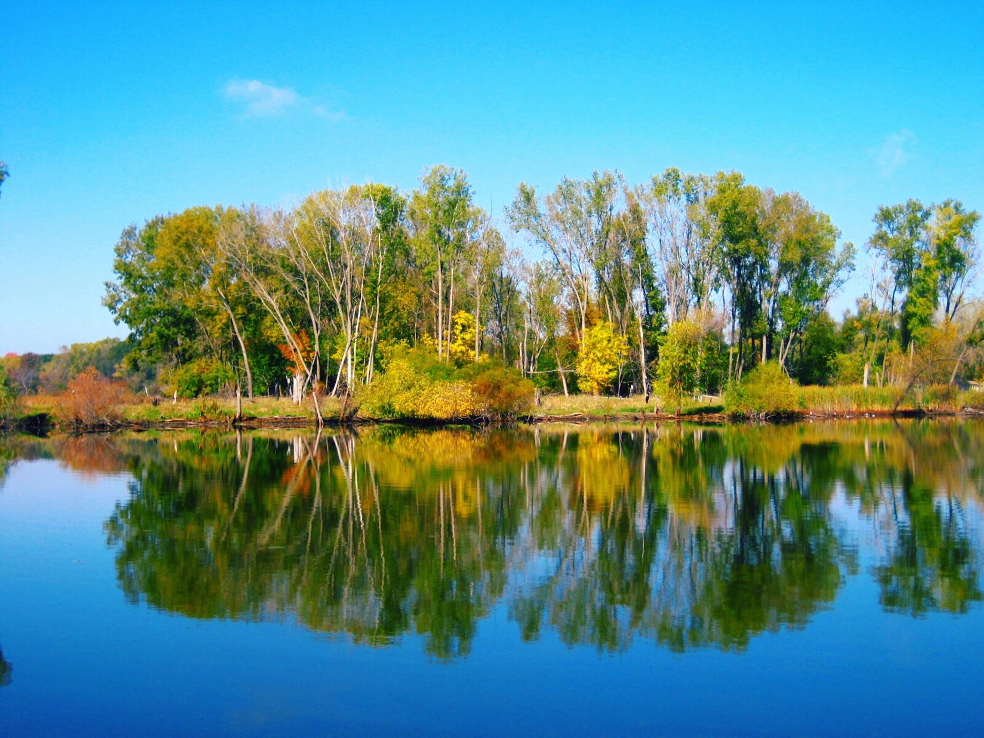 Mirrors   shalicia.johnson, calm, forest, lake