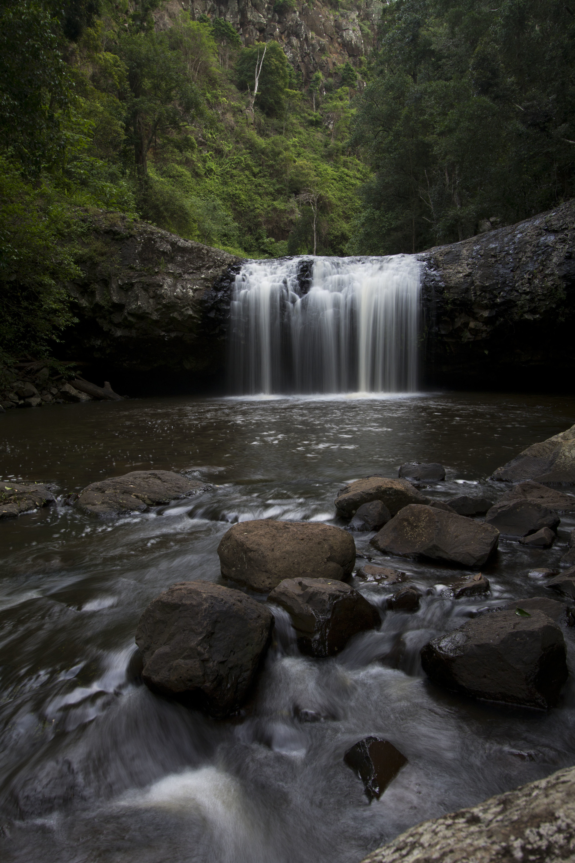 Beautiful waterfall in forest   falling, rock, motion, grass