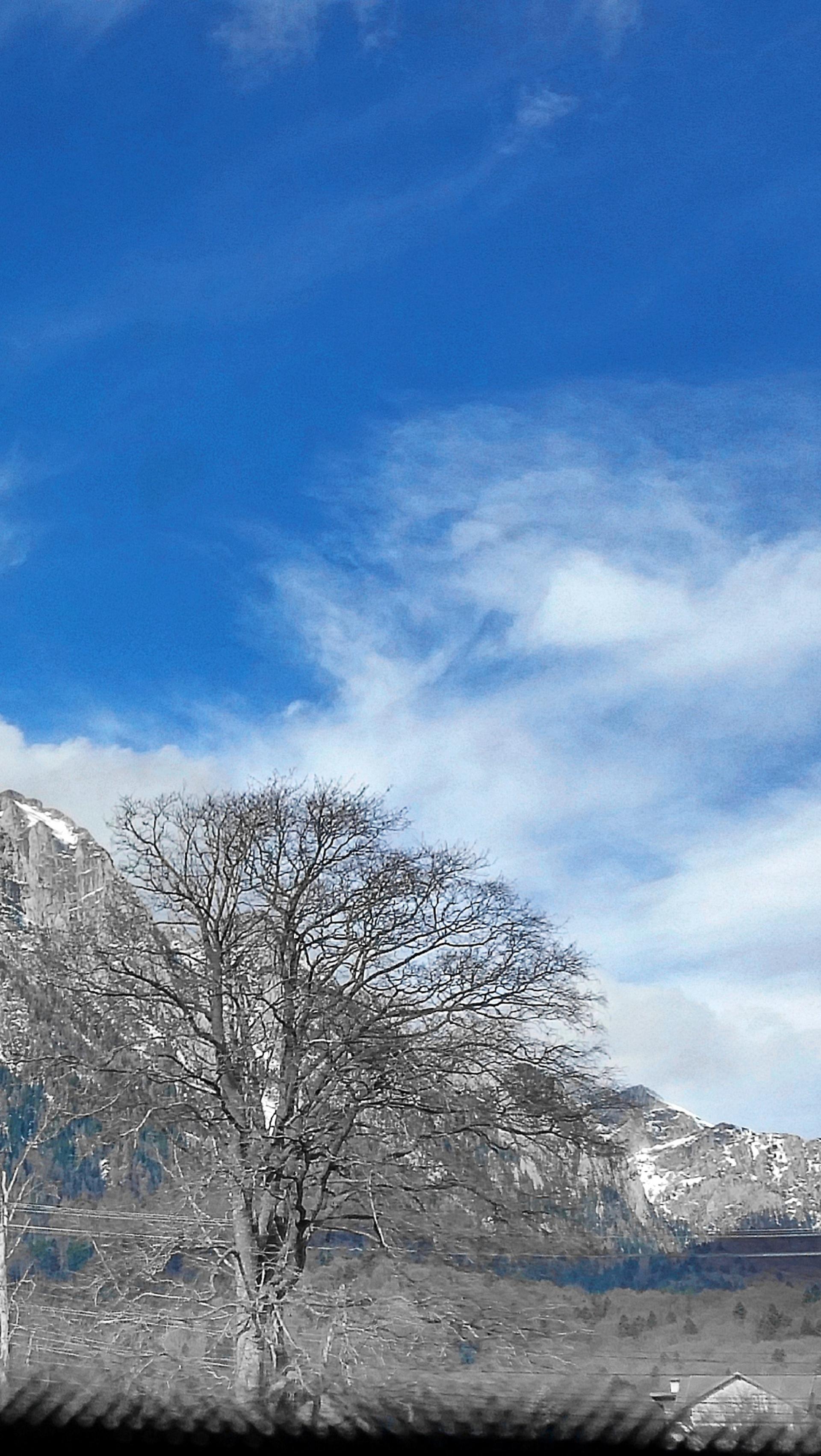 snow | winter, cold, ice, no person