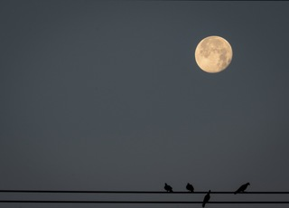 Sunrises, sunsets and the moon example photo