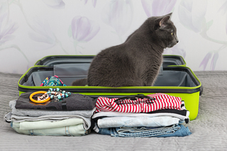 Suitcase for holiday example photo