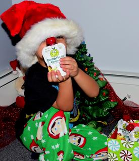 Holiday season with Buddy Fruits example photo