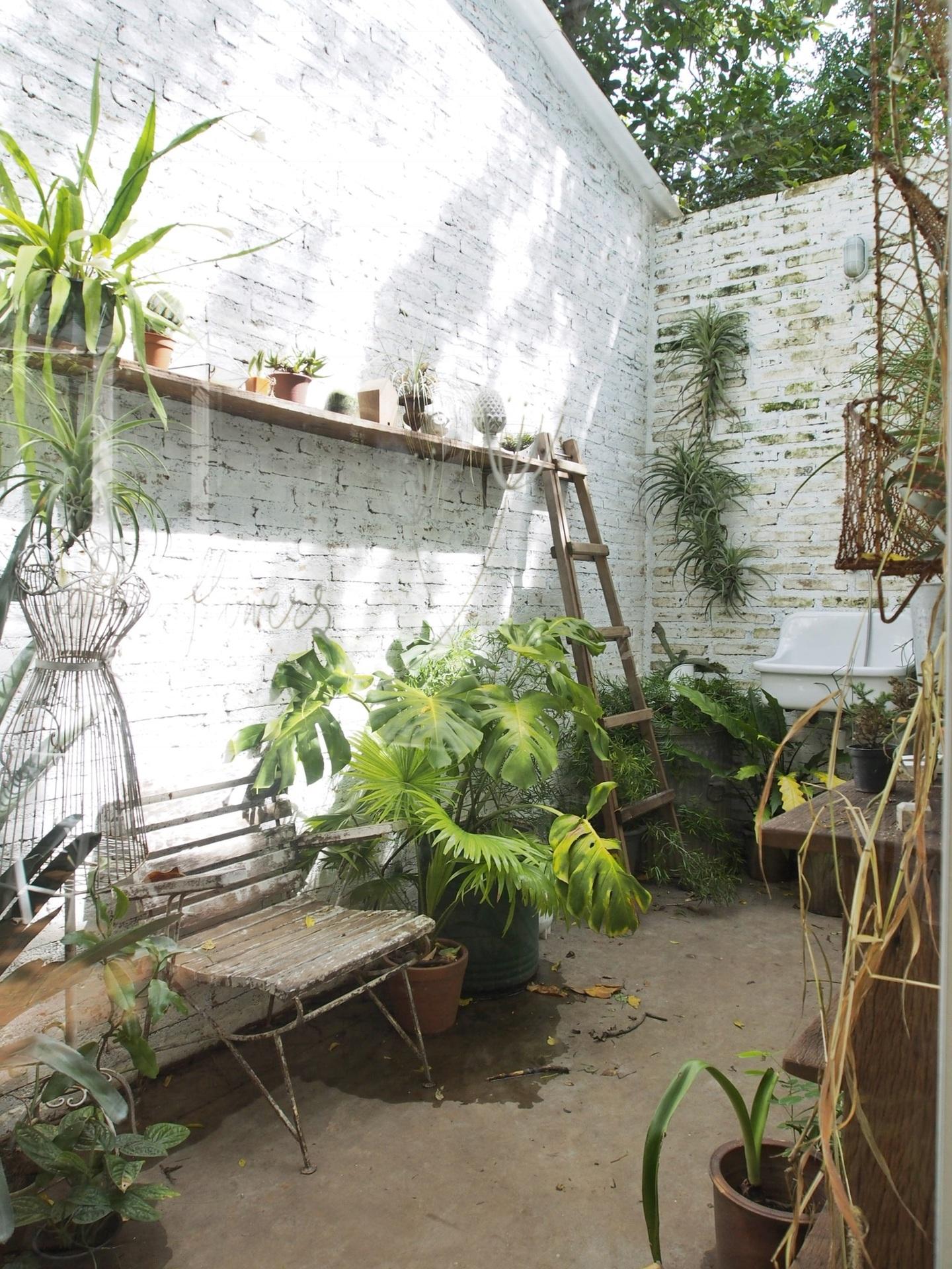 Crazy plant people!  example photo