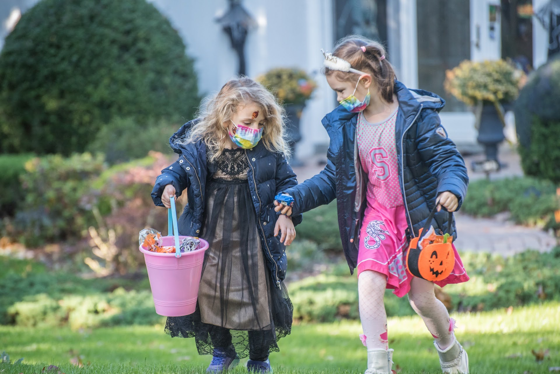 Trick or Treat example photo